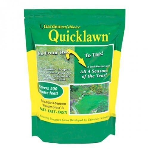 Quick Lawn Grass Seed Review