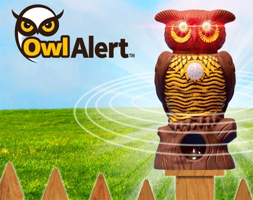 Owl Alert: Does is it Work?