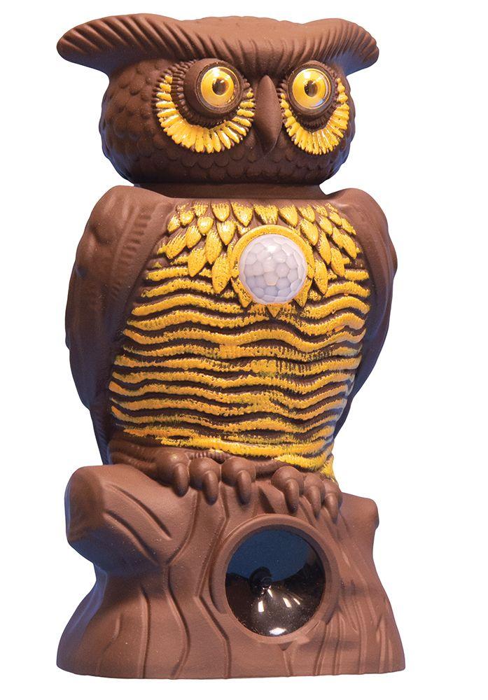 Owl Alert Pest Control for your Garden