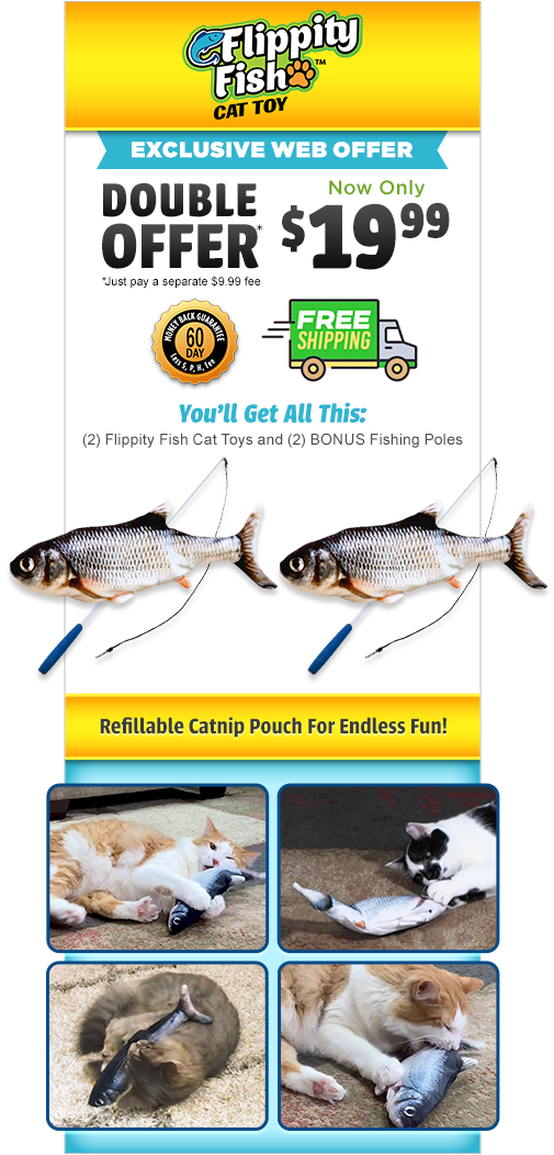 Flippity Fish™ Cat Toy